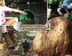 Gold Rush Country Prospecting with Friends & Family Backpack in with a Sluice Box Head to a spot where the old timers left some gold behind for our sluice! Pan it out the concentrate with the New Maverick Pan! Then see the Gold Magic Spiral Pan in action in Coloma, CA near Sutters Mill. Extended DVD version features a look at a 8.7 Ounce Gold Nugget found in California with a Metal Detector. See the whole story with the Prospector who recently found this enormous specimen estimated to be worth up to $20,000!!